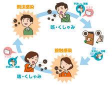コロナウイルス感染は、飛沫感染と接触感染に気を付けてください。